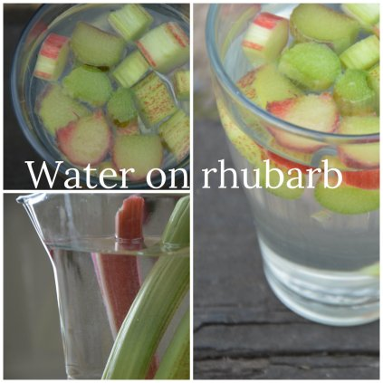 Water on rhubarb