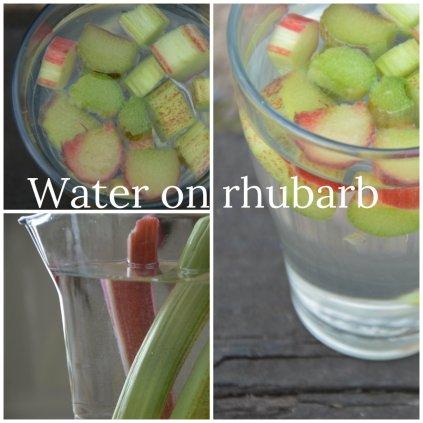 Water on rhubarb
